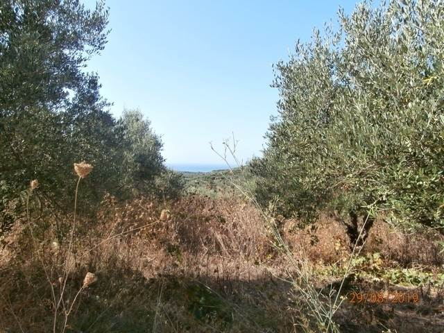 (For Sale) Land Plot || Chania/Platanias - 954 Sq.m, 38.000€