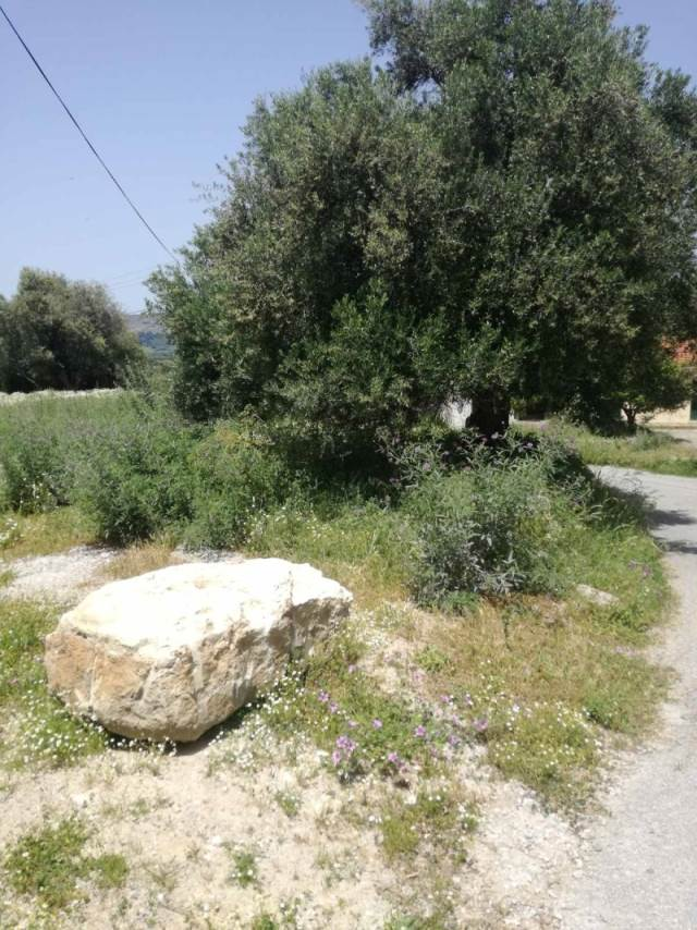 (For Sale) Land Plot || Chania/Kryonerida - 460 Sq.m, 19.000€